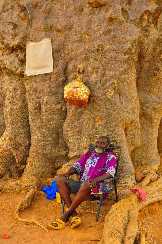 Guardián del baobab