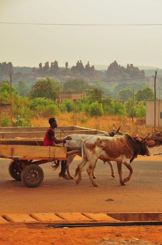 Carreta de bueyes en Sindou