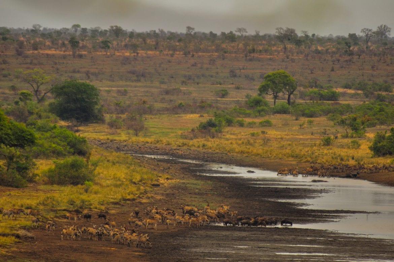 Panorámica desde Mlondozi Dam